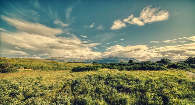Nature near Spean Bridge, Scotland.