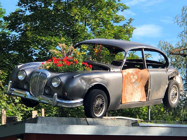 2020-07-19 iP JB_50750#co Jaguar