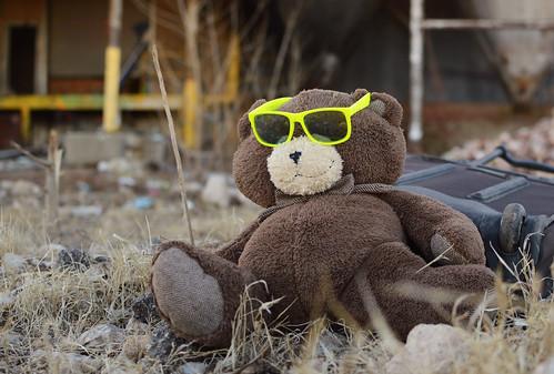 okc oklahomacity 2021 january downtown sunglasses suitcase stuffedanimal lost sunset