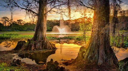landscape nature nikond850 beauty fountain paradise enchanted naturepark sunrise inspirational trees serenity
