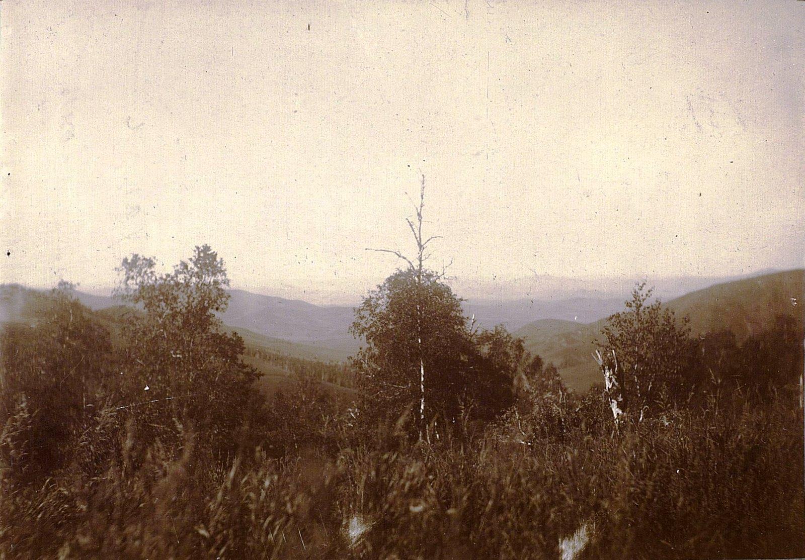 Вид с вершины на север