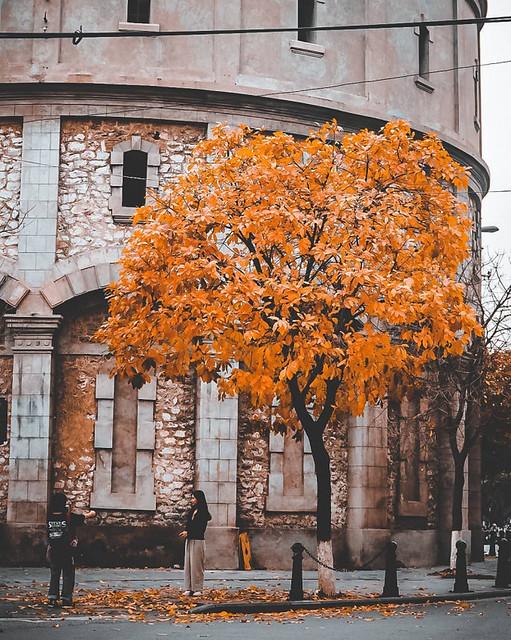 Bốt Hàng Đậu ( Hà Nội ) mùa thay lá
