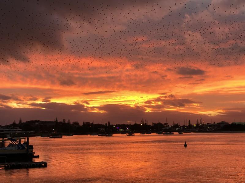 Hastings River sunset