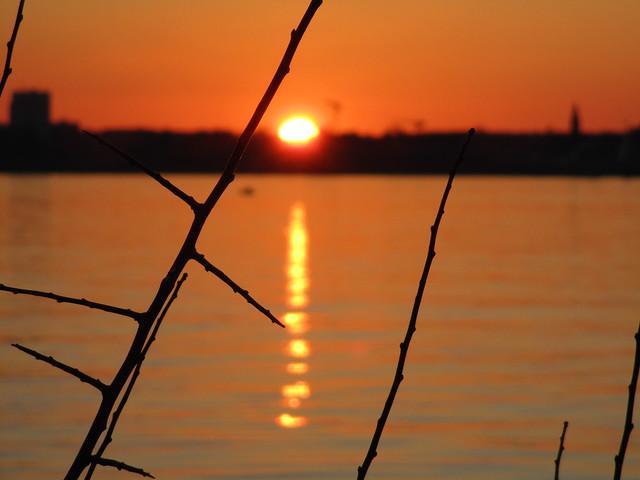 Kieler Förde im Sonnenuntergang