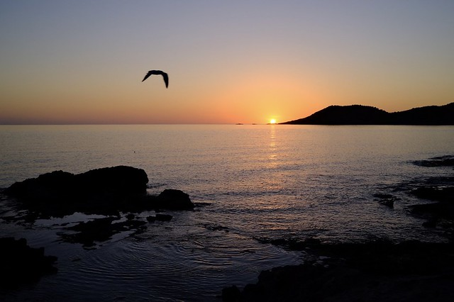 Ses Portes Ibiza