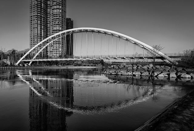 Humber Bay Bridge - 0172