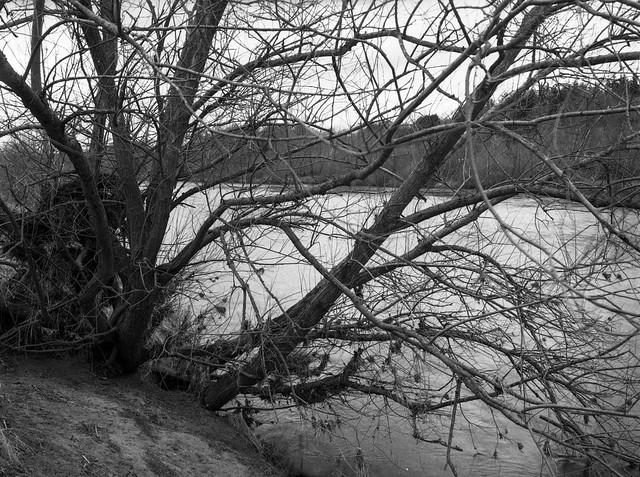 River Tyne, Mamiya 645E. Delta 400 in HC110