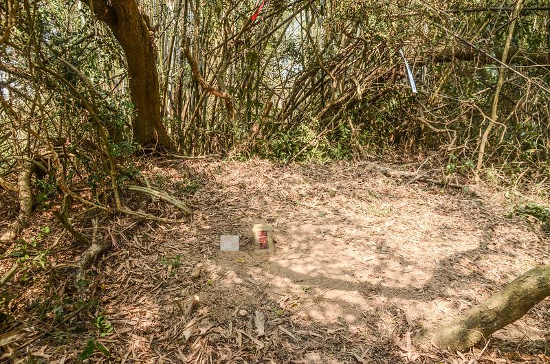 笨潭山冠字保(45)土地調查局圖根點(Elev. 113 m) (4)
