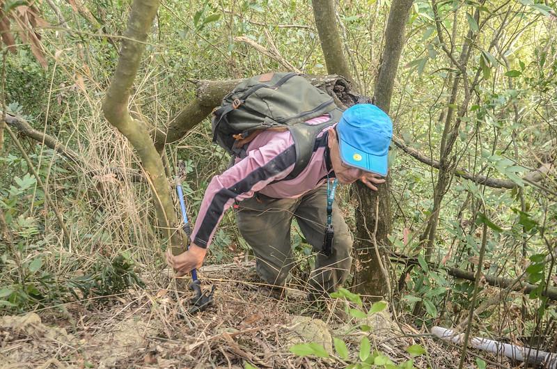 陡峭危稜路段 (2)