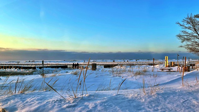 Wonders of Winter #73