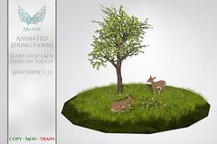 [Ari-Pari] Animated Spring Fawns