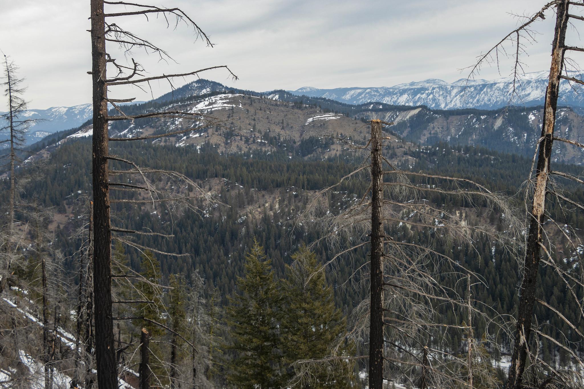 Tunneltop Ridge
