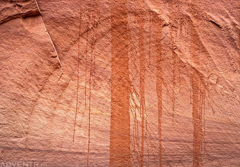 Canyon Design