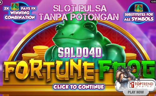 Judi Slot Fortune Frog Top Trend Gaming SALDO4D