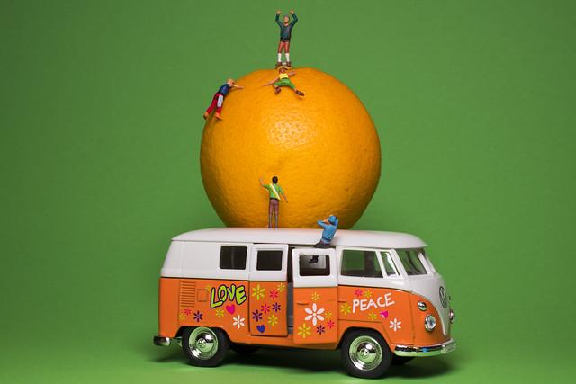 # Orange # Crazy Tuesday  (Explore! 🌟16. März 2021)
