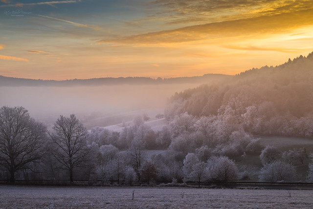 Sunrise and hoarfrost