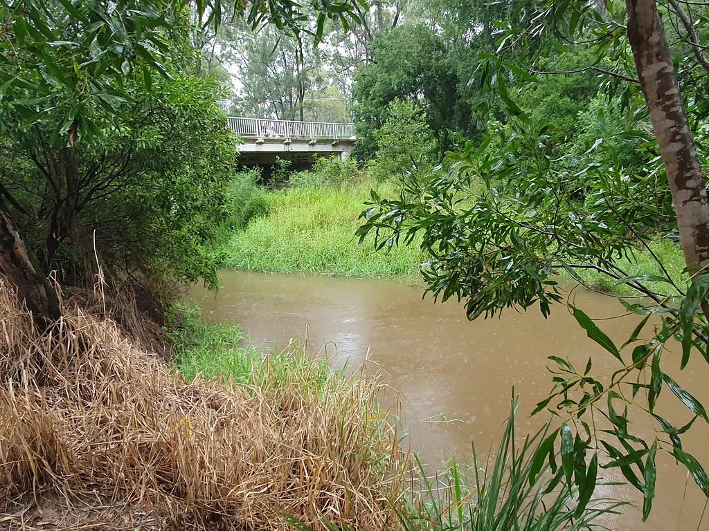 Canoe (Oxley) Creek