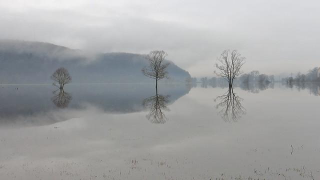 im Hochwasser 3 / in flood 3