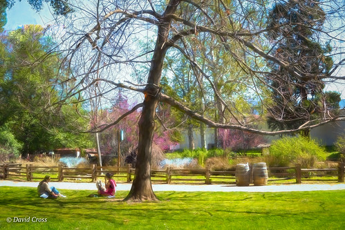 california suttersfortstatepark landscape winter canonef24105mmf4lisusm sacramento topazstudio park canon5dmarkiii lightroom6