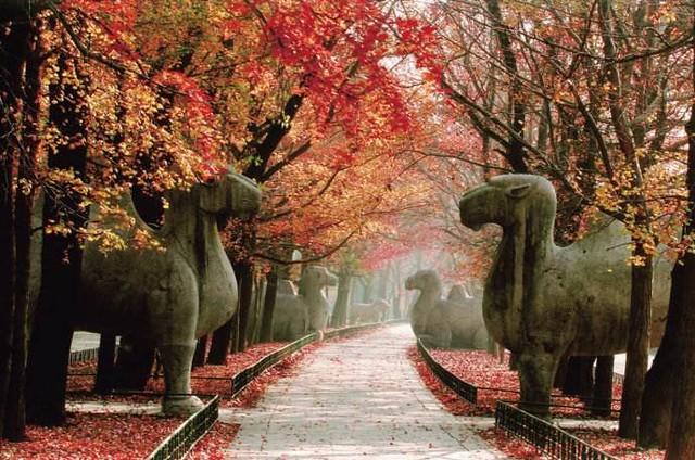 南京明孝陵 Nanjing Ming Xiaoling