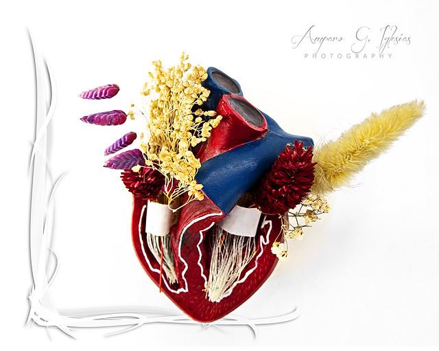 Un corazón lleno de flores - Amparo García Iglesias
