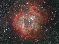 A quick view of the Rosetta nebula