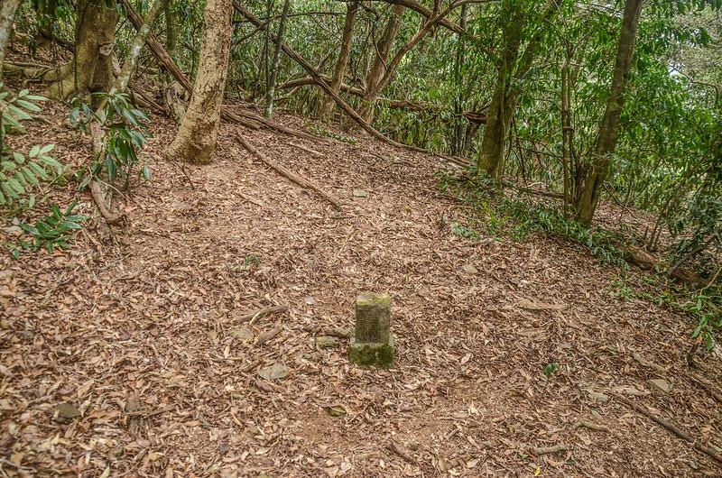 姑仔崙社冠字補沖(47)山字森林三角點(Elev. 331 m) (2)
