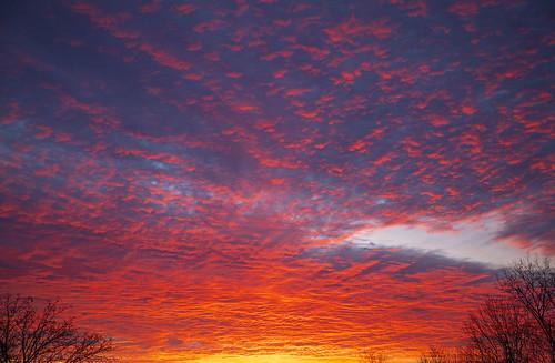 sun sunrise life nature beautiful colorful light landscape peaceful amazing fire wow canon 2021