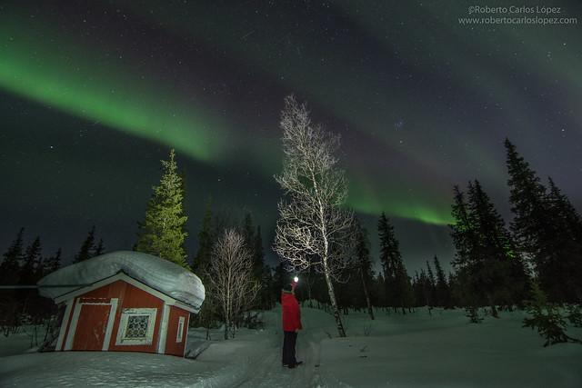 Sele ante una aurora boreal en Laponia Sueca durante uno de los viajes realizados en invierno