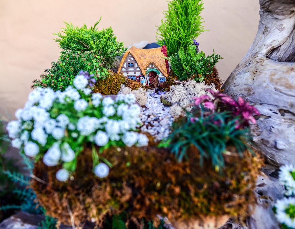 Snow White mini cottage Epcot flower & garden