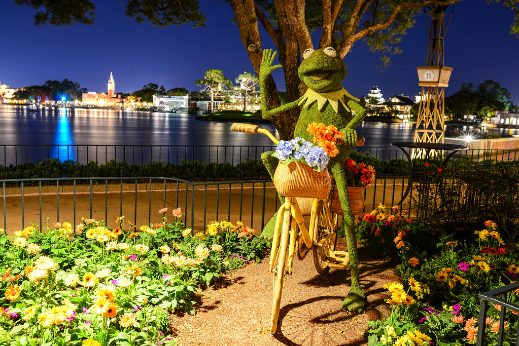 Kermit topiary night Epcot flower & garden