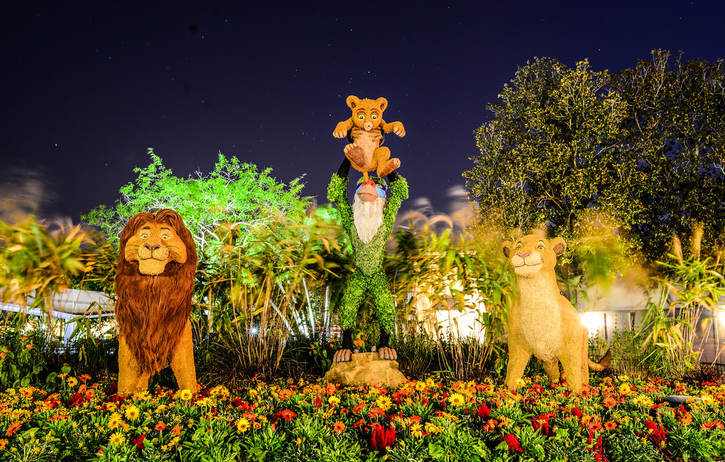Lion King topiary Epcot flower & garden