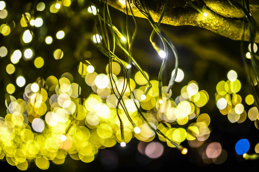 Epcot lights