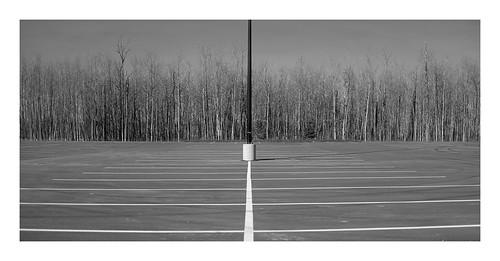 2020 naki stalbert edmonton bus fujifilm fujilove canada vanveenjf parking terminal driving cars covid lonely alone tree forest clouds dark bw