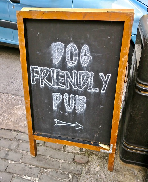Dog Friendly Pub, Bristol, UK