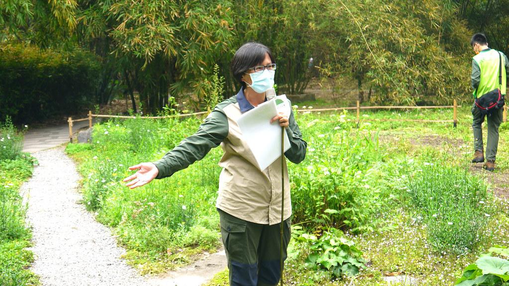 林試所助理研究員伍淑惠,是催生野花園的發起人。黃思敏攝