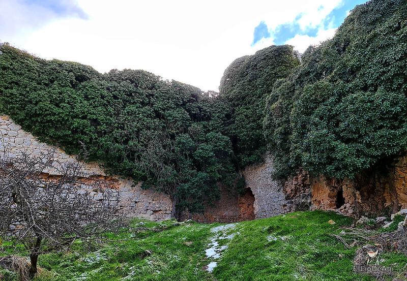 Visitando Caracena y su castillo (27)