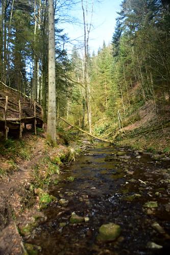 The enchanting Strümpfelbachtal