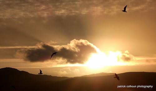sunset nature landscape scenery clouds birds sun buncrana donegal ireland