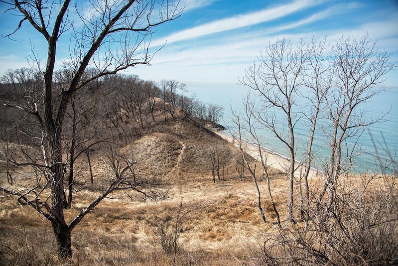 The Dormant Dunes