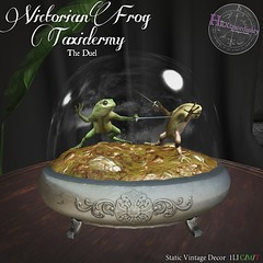 HEXtraordinary - Victorian Frog Taxidermy: The Duel - The Engine Room