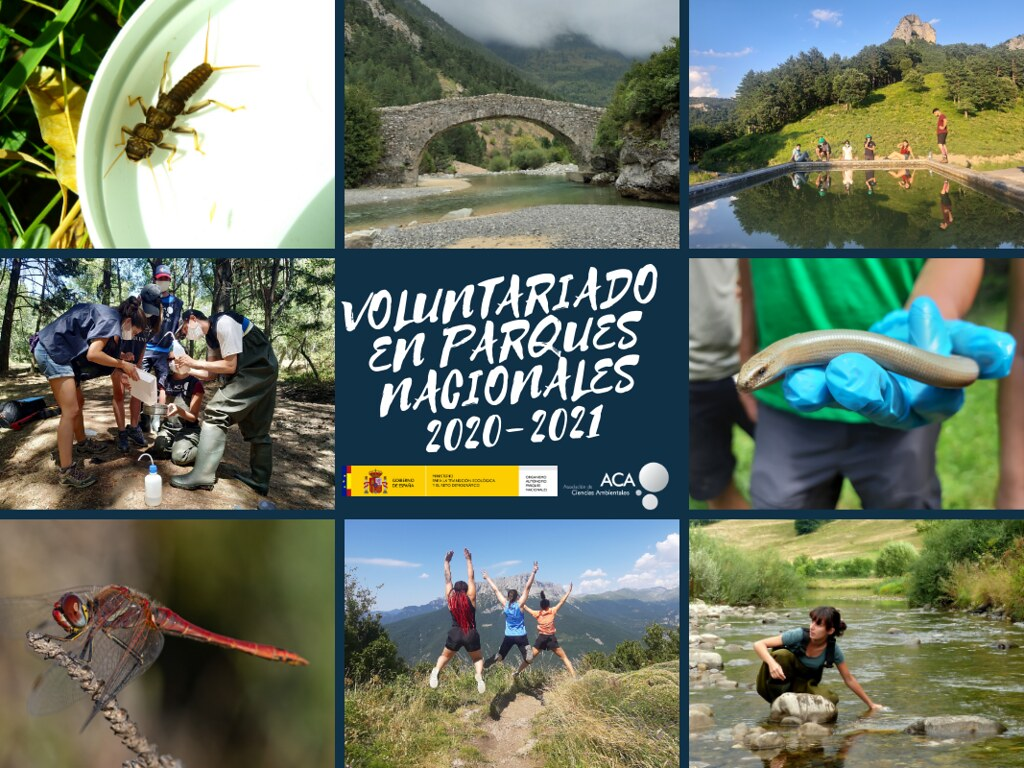 Voluntariado Parques Nacionales