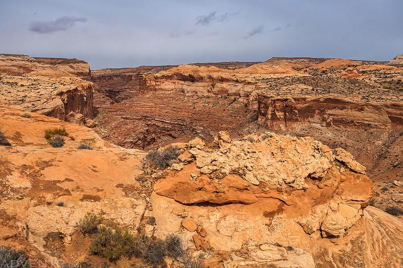 Leaving Horseshoe Canyon