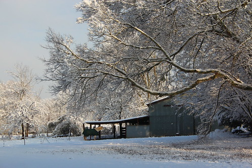 texas tx snow landscape trees barn stable sunrise