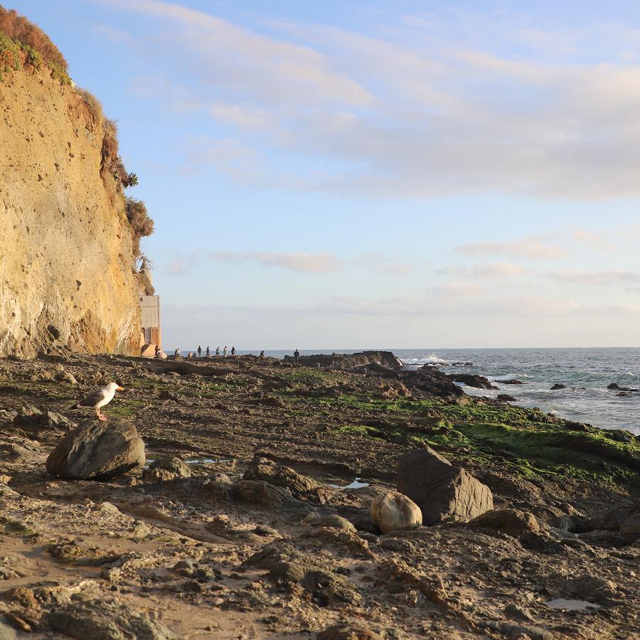 victoria-beach-10