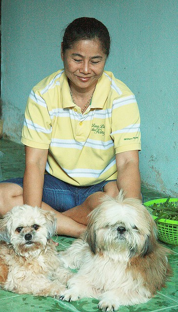 traditional thai masseuse with her dogs
