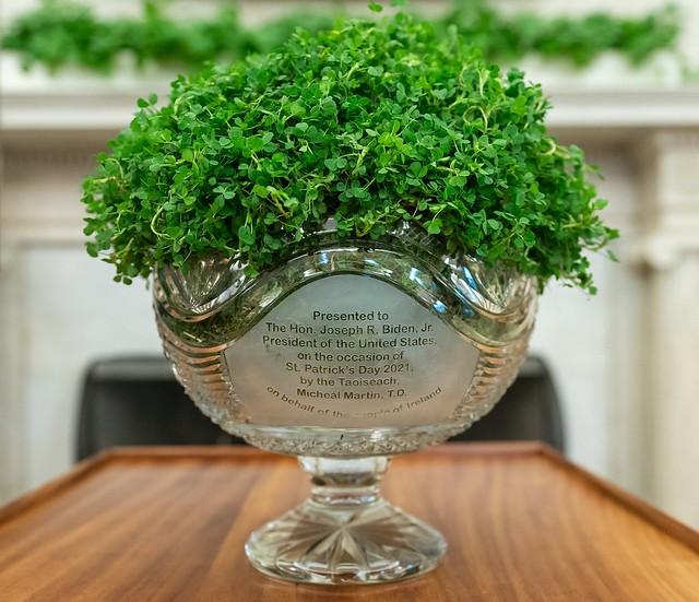 Bowl of Shamrock presented to President Joe Biden by Ireland Prime Minister Micheál Martin