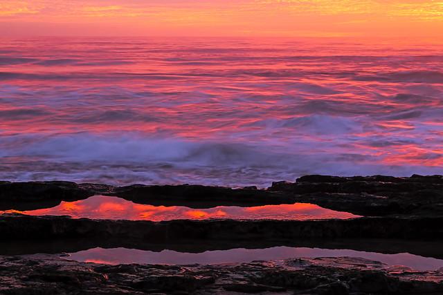 Tide pool reflections