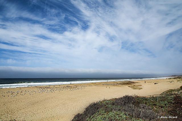 California Beach, USA