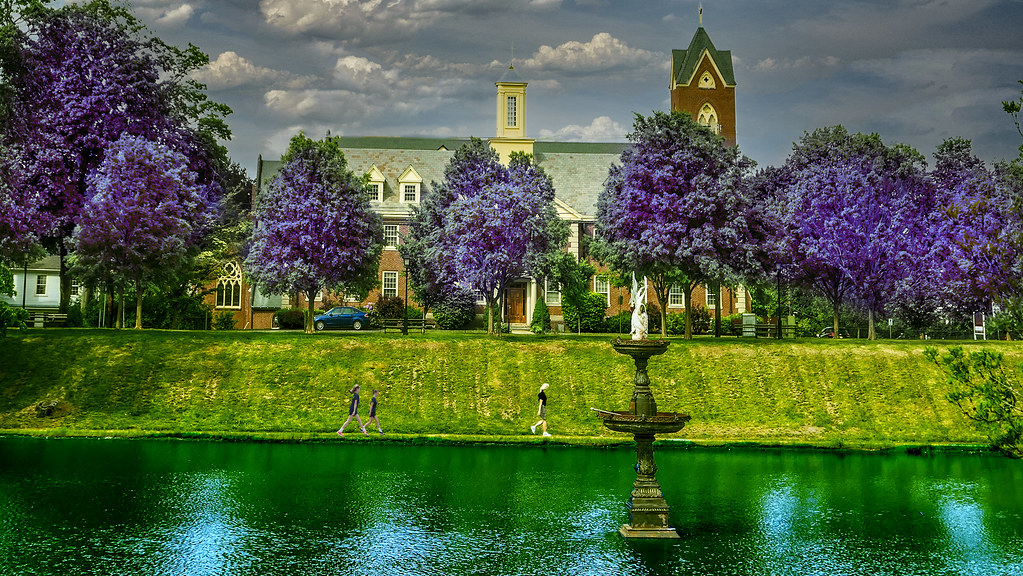 Mall and Frog Pond in Color